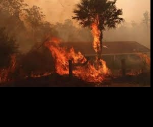 What landlords need to know about bushfires & natural disasters